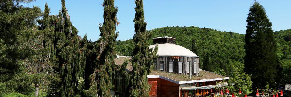 Un parc botanique unique en Suisse !