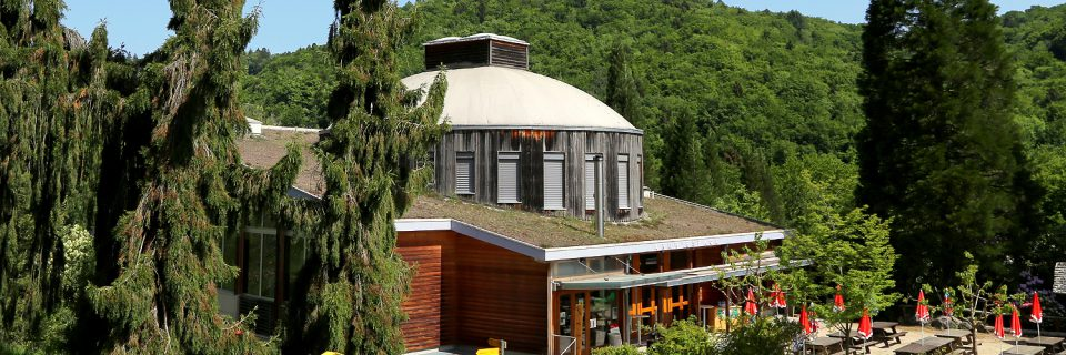 Fête des 50 ans de l'Arboretum !