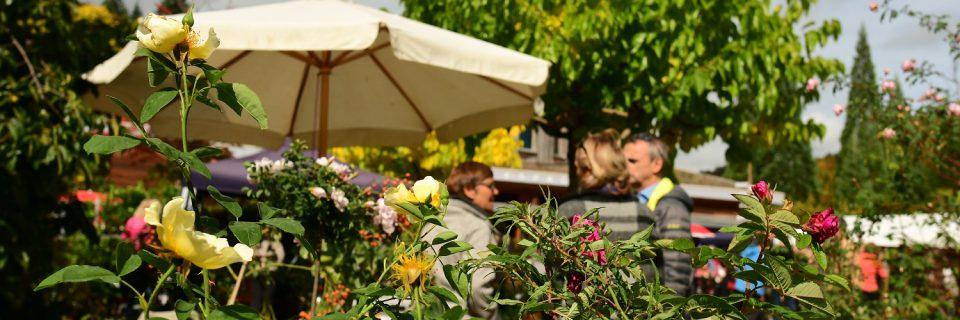 Le marché aux plantes de l'Arboretum